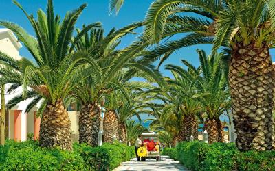 graikija-kreta-aldemar-royal-beach-resort-teritorija