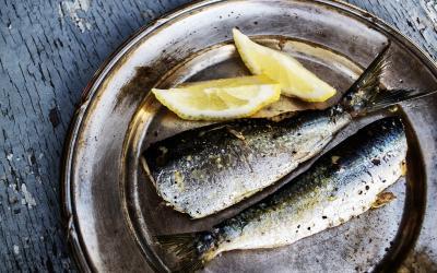 Graikija. Sardines