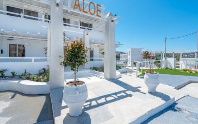 Graikija. Rodo sala. Aloe Hotel
