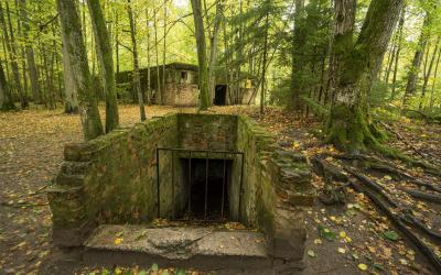 Hitlerio bunkeris, Vilko guolis