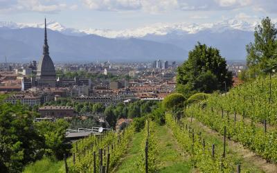 Turino panorama